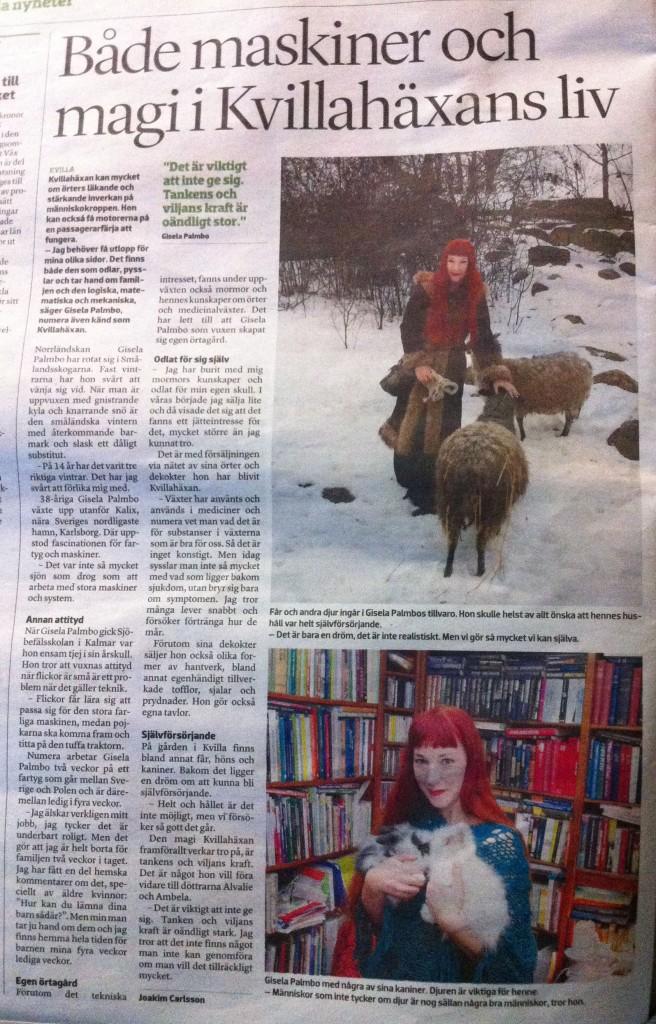 kalmarlänstidn jan2013
