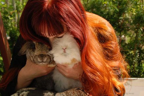 kvilla häxans kaniner