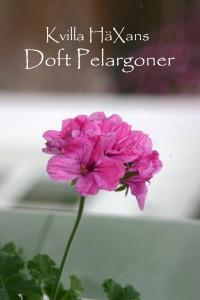 Doftpelargon3