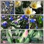 Kx våren